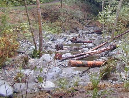 OO Denny Creek Restoration 2012