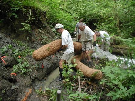 hauling in coir logs