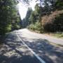 Potential Improvements Identified for Juanita Drive