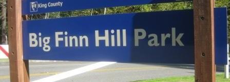 Sat. Feb 24 Tree Planting in Big Finn Hill Park – Volunteer