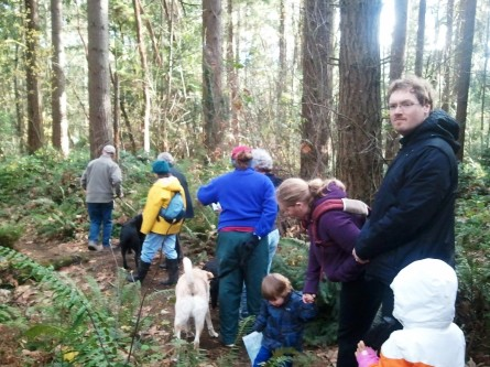 Nov 17 Big Finn Hill hikers explore the understory along a trail.