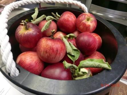 Annette-Apples