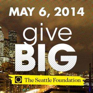 GiveBIG2014_toolkit_webbanner