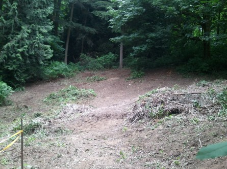 Juanita Heights Park EAS  remove approx 8K sq ft of blackberies June 10, 2014