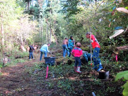Juanita Woodlands 2014 work party