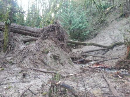 landslide2-oo-denny-thanksgiving-2016